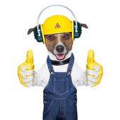 Sob cão de construção — Foto Stock