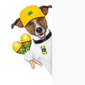 Barzil dog — Stock Photo