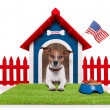 Dog house — Stock Photo