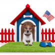 Stock Photo: Dog house