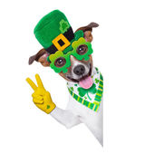 St patricks day pies — Zdjęcie stockowe