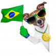 Постер, плакат: Brazil fifa world cup dog