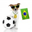 Dog as soccer with medal and flag — Stock Photo #43068921