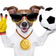 Brazil fifa world cup dog — Stock Photo #43068981