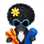 French bulldog on vacation — Stock Photo #45550813