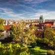 View from Prague Castle — Stock Photo #13790080