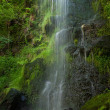 Mallyan Spout waterfall — Stock Photo