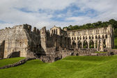 Vista panorâmica das ruínas da abadia de rievaulx — Foto Stock