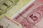 деньги из словении — Стоковое фото