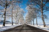 在冬天空路 — 图库照片