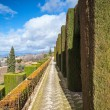 Gardens in Granada in winter — Stock Photo
