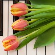 Stock Photo: Music and flowers