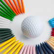 The colorful wooden golf tees — Stock Photo #27264541
