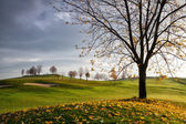 On the golf course in Prague — Stock Photo