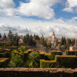 Gardens in Granada in winter — Foto de Stock