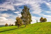 Idyllic autumn scenery on the golf course — Stock Photo