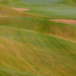 Summer on the empty golf course — Stock Photo
