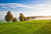 On the empty golf course in the morning mist — Stock Photo
