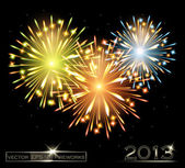 Fireworks color 2013 — Stock Vector