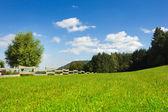 Fence on hill - horizontal — Stock Photo