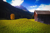 Chalet and tree on lawn — Stock Photo