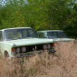 Foto Stock: Old abandoned car