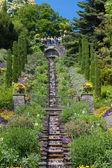 Isle of Mainau flower garden — Stock Photo