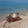 Vintage Leather suitcase on the beach — Stock Photo #51553765