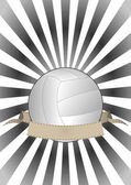 Volleyball banner — Stock Vector