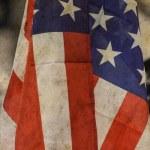 USA Flag — Stock Photo #17388693