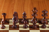 Black chess — Stock Photo