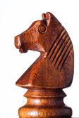 Paard schaken — Stockfoto