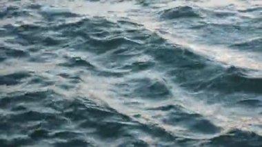 Ocean Waves — Stock Video