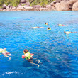 Snorkeling in blue coral reef - Stock Photo