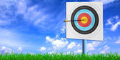 Archery target with arrow — Stock Photo