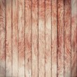 Grunge wood panels — Stock Photo #25512707