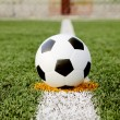 Soccer ball on grass — Stock Photo #25518331