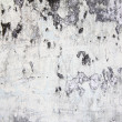 Abstract grunge wall — Stock Photo #25519911