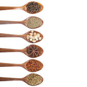 Collection of 6 spices on a wooden spoon — Stock Photo