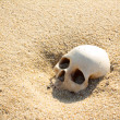 Human skull half buried in the beach sand — Stock Photo