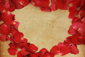 Vintage romantic background with roses petals — Stock Photo
