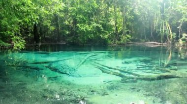 Blue lake, Spring Pool is the origin of emerald pool. In Kabri South of Thailand — Stock Video