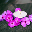 Royalty-Free Stock Photo: Candle and flowers