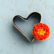 Vintage heart with flower — Stock Photo
