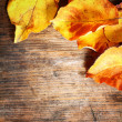 Yellow autumn leaves on wooden background — Stock Photo