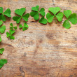 Stok fotoğraf: Green shamrock leaves on wooden background