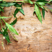 Green leaves on wooden background — Stock Photo