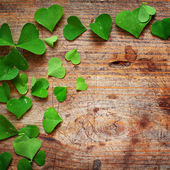 Green shamrock leaves on wooden background — Stock Photo