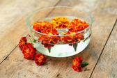 Orange flowers spa in glass bowl on wooden background — Stock Photo