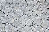 Cracks on dry earth — Stock Photo
